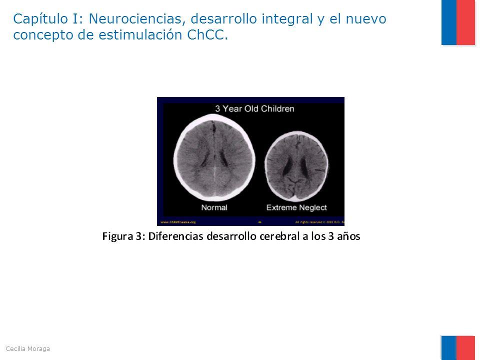 Capítulo I: Neurociencias, desarrollo integral y el nuevo concepto de estimulación ChCC. Cecilia Moraga