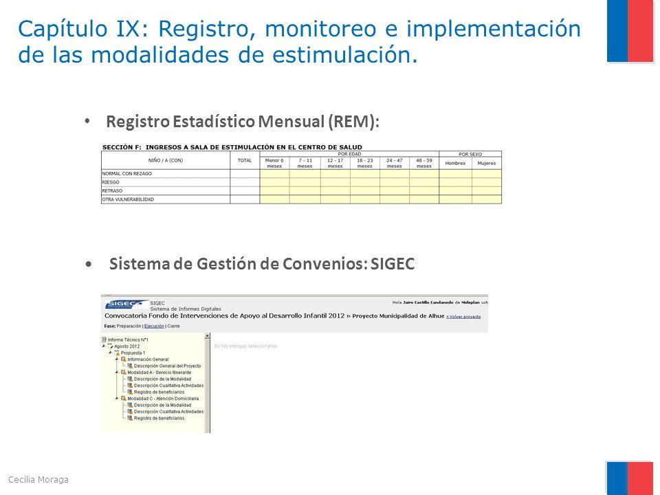 Capítulo IX: Registro, monitoreo e implementación de las modalidades de estimulación. Registro Estadístico Mensual (REM): Sistema de Gestión de Conven
