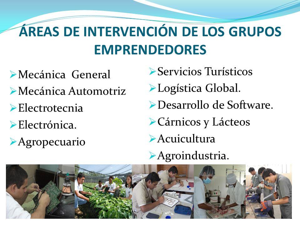 ÁREAS DE INTERVENCIÓN DE LOS GRUPOS EMPRENDEDORES Servicios Turísticos Logística Global.
