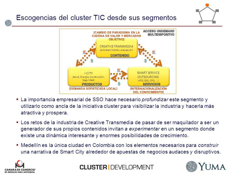 Escogencias del cluster TIC desde sus segmentos La importancia empresarial de SSO hace necesario profundizar este segmento y utilizarlo como ancla de