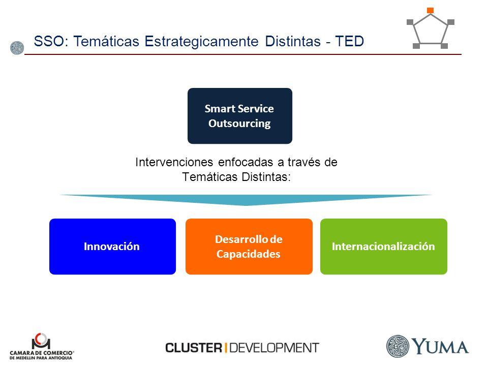 SSO: Temáticas Estrategicamente Distintas - TED Innovación Desarrollo de Capacidades Internacionalización Intervenciones enfocadas a través de Temátic