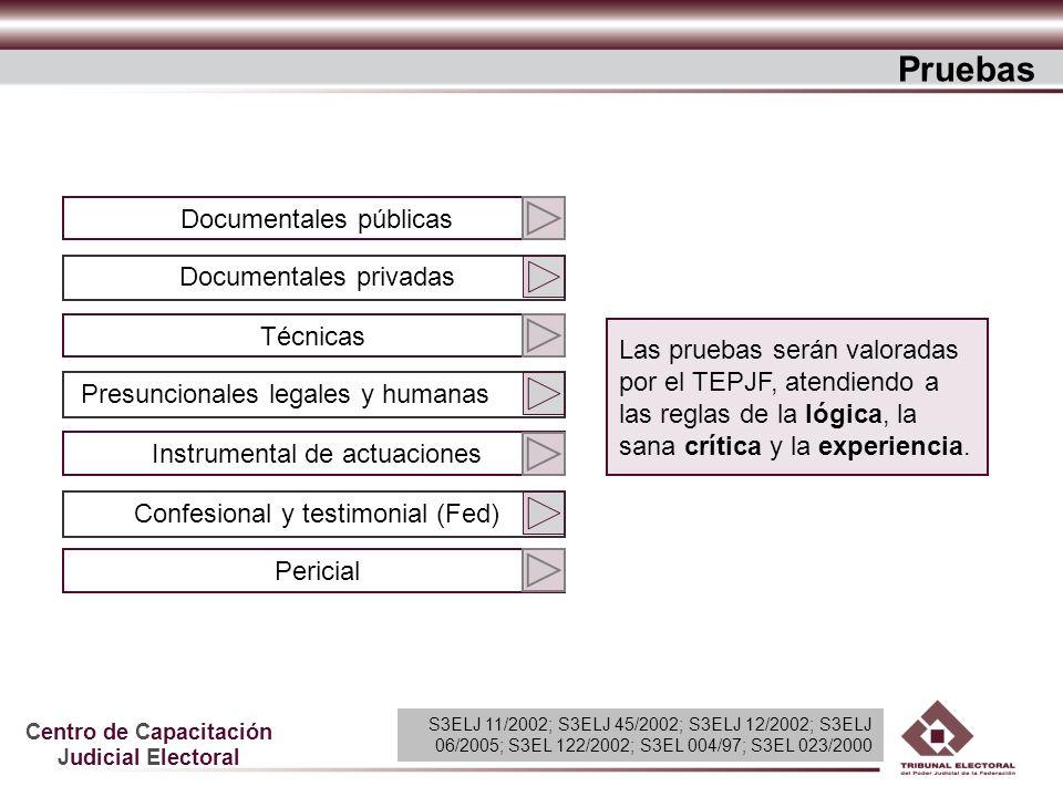 Centro de Capacitación Judicial Electoral Documentales públicas Documentales privadas Técnicas Presuncionales legales y humanas Instrumental de actuac