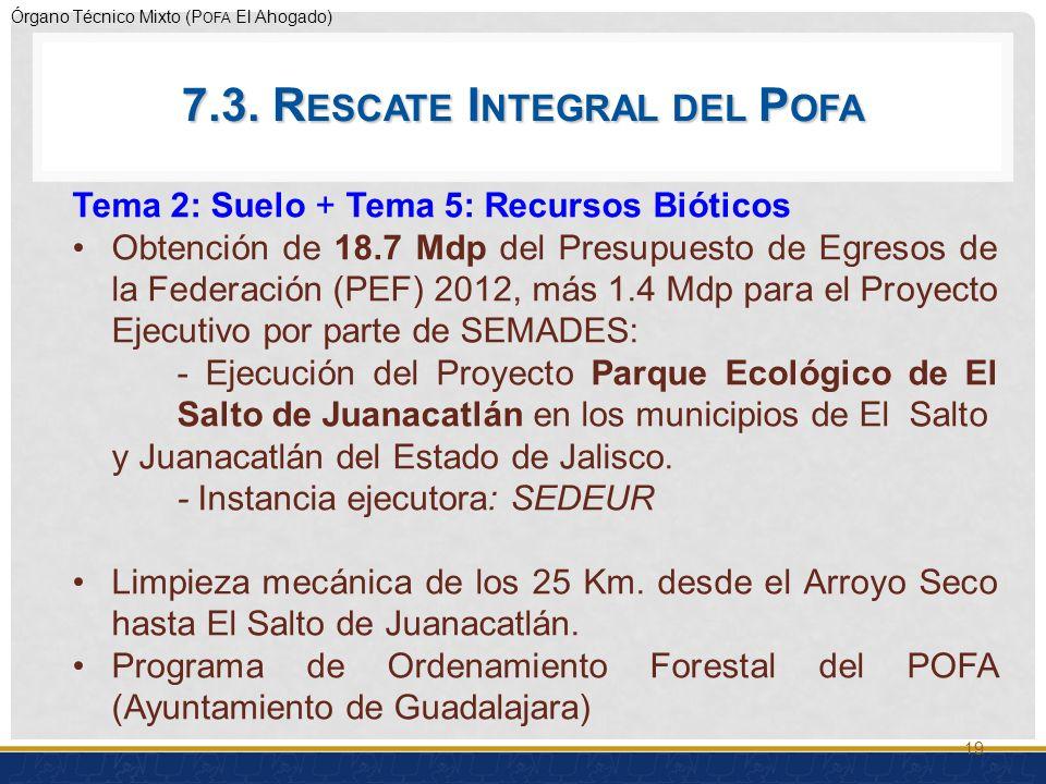 Órgano Técnico Mixto (P OFA El Ahogado) 19 Tema 2: Suelo + Tema 5: Recursos Bióticos Obtención de 18.7 Mdp del Presupuesto de Egresos de la Federación (PEF) 2012, más 1.4 Mdp para el Proyecto Ejecutivo por parte de SEMADES: - Ejecución del Proyecto Parque Ecológico de El Salto de Juanacatlán en los municipios de El Salto y Juanacatlán del Estado de Jalisco.