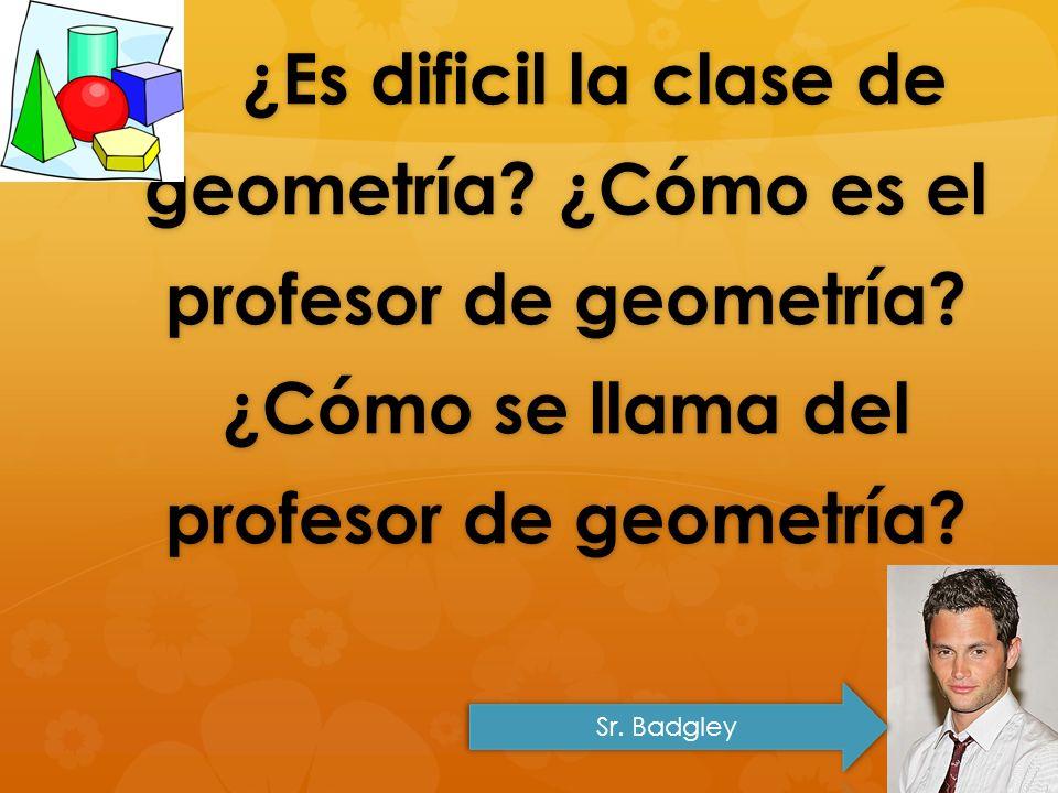 ¿Es dificil la clase de geometría? ¿Cómo es el profesor de geometría? ¿Cómo se llama del profesor de geometría? ¿Es dificil la clase de geometría? ¿Có