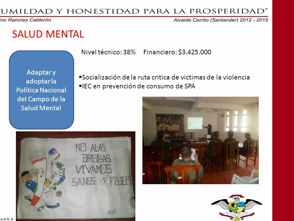 SALUD MENTAL Adaptar y adoptar la Política Nacional del Campo de la Salud Mental Socialización de la ruta critica de victimas de la violencia IEC en prevención de consumo de SPA Nivel técnico: 38% Financiero: $3.425.000