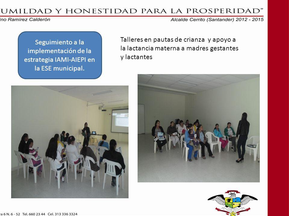 Seguimiento a la implementación de la estrategia IAMI-AIEPI en la ESE municipal.