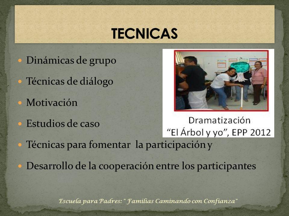 Dinámicas de grupo Técnicas de diálogo Motivación Estudios de caso Técnicas para fomentar la participación y Desarrollo de la cooperación entre los pa