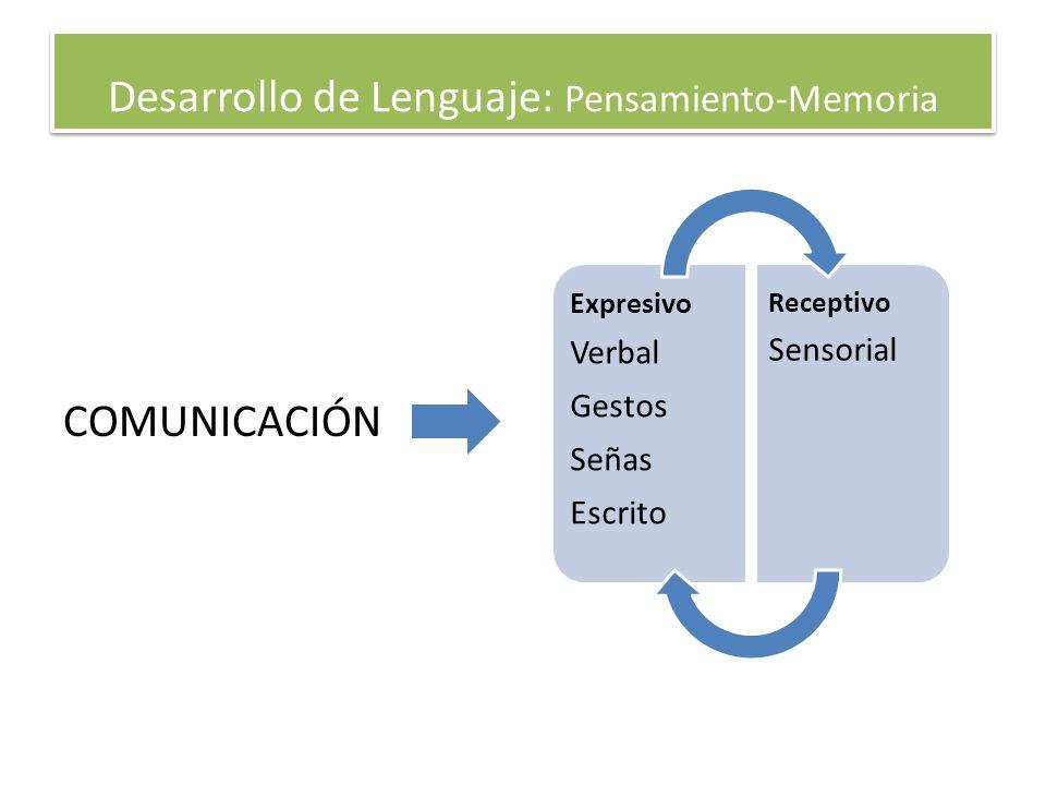 Desarrollo de Lenguaje: Pensamiento-Memoria COMUNICACIÓN Expresivo Verbal Gestos Señas Escrito Receptivo Sensorial