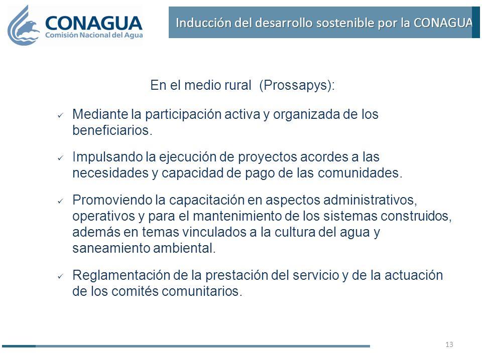 En el medio rural (Prossapys): Mediante la participación activa y organizada de los beneficiarios.