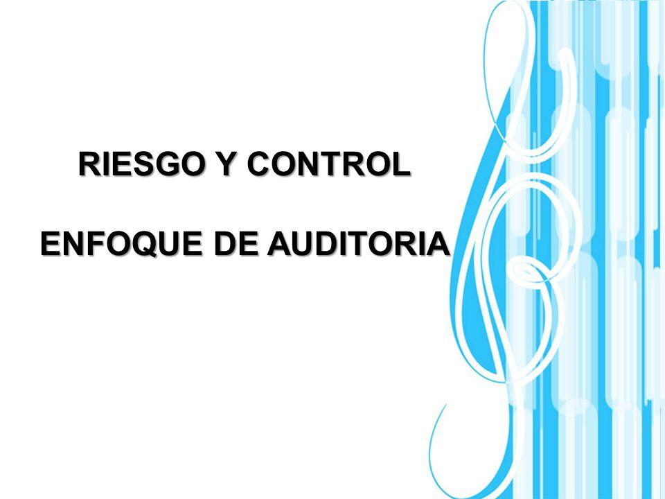 Page 1 RIESGO Y CONTROL ENFOQUE DE AUDITORIA