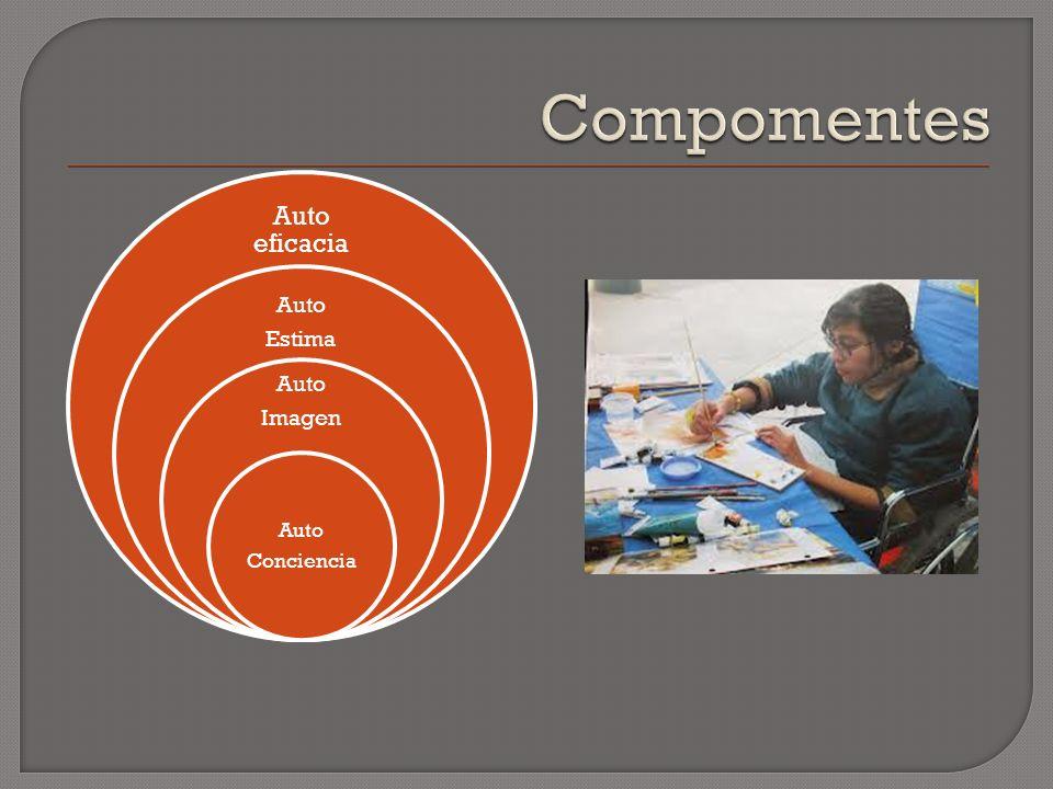 Auto eficacia Auto Estima Auto Imagen Auto Conciencia