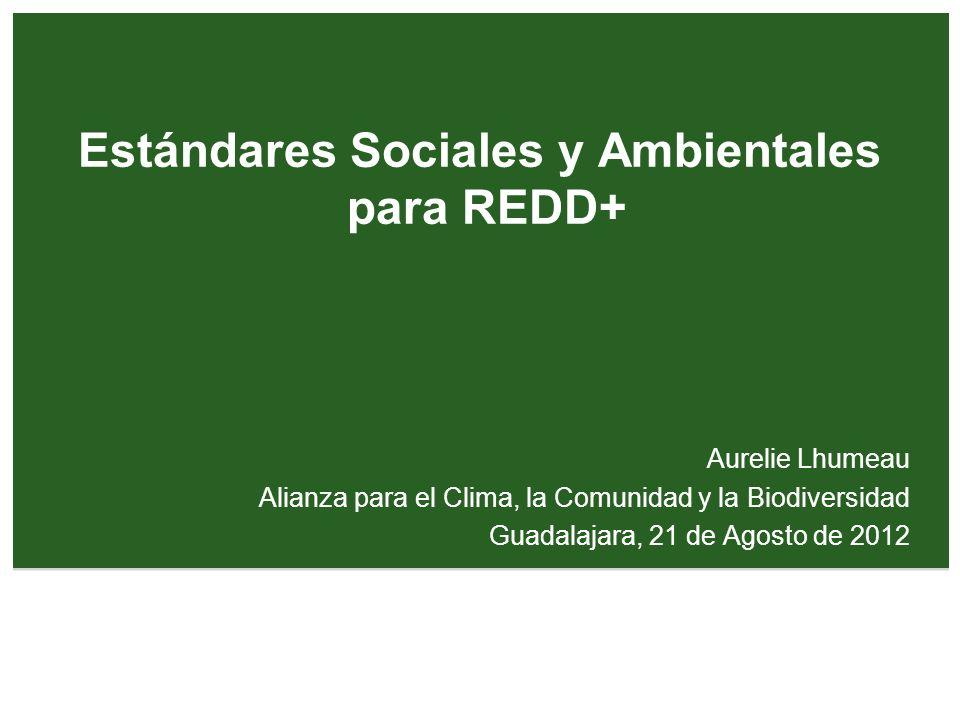 Estándares Sociales y Ambientales para REDD+ Aurelie Lhumeau Alianza para el Clima, la Comunidad y la Biodiversidad Guadalajara, 21 de Agosto de 2012