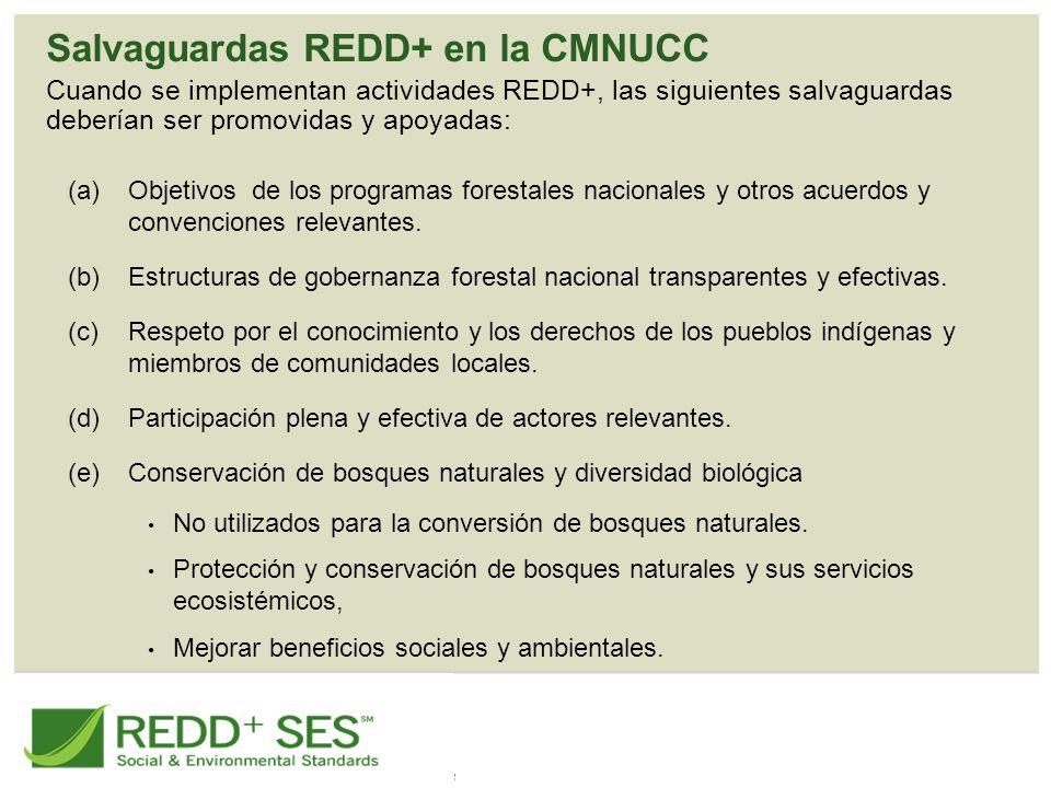 Salvaguardas REDD+ en la CMNUCC Cuando se implementan actividades REDD+, las siguientes salvaguardas deberían ser promovidas y apoyadas: (a)Objetivos