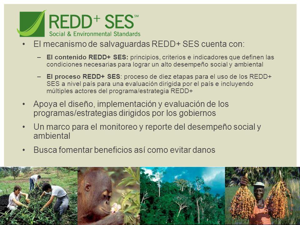 El mecanismo de salvaguardas REDD+ SES cuenta con: –El contenido REDD+ SES: principios, criterios e indicadores que definen las condiciones necesarias para lograr un alto desempeño social y ambiental –El proceso REDD+ SES: proceso de diez etapas para el uso de los REDD+ SES a nivel país para una evaluación dirigida por el país e incluyendo múltiples actores del programa/estrategia REDD+ Apoya el diseño, implementación y evaluación de los programas/estrategias dirigidos por los gobiernos Un marco para el monitoreo y reporte del desempeño social y ambiental Busca fomentar beneficios así como evitar danos
