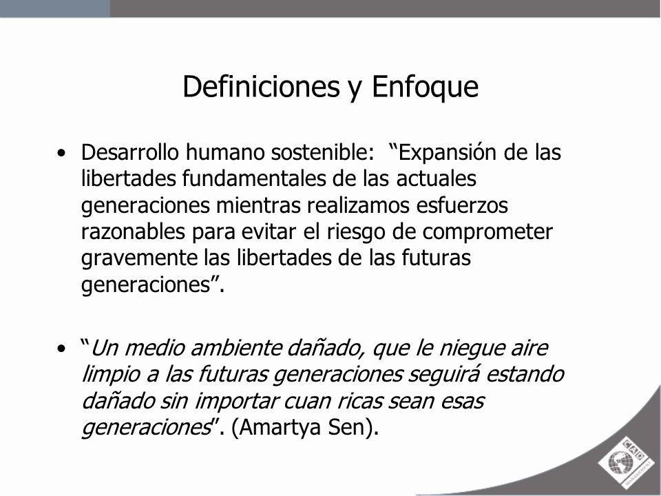 Definiciones y enfoque La equidad y sus vínculos con el desarrollo sostenible: –La degradación medioambiental daña en múltiples aspectos las capacidades de las personas limitando el desarrollo humano.
