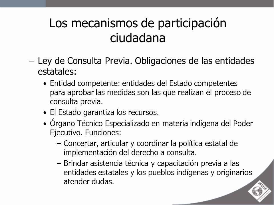 Los mecanismos de participación ciudadana Mantener un registro de las organizaciones representativas e instituciones de los pueblos indígenas y originarios e identificar a los que deben ser consultados.