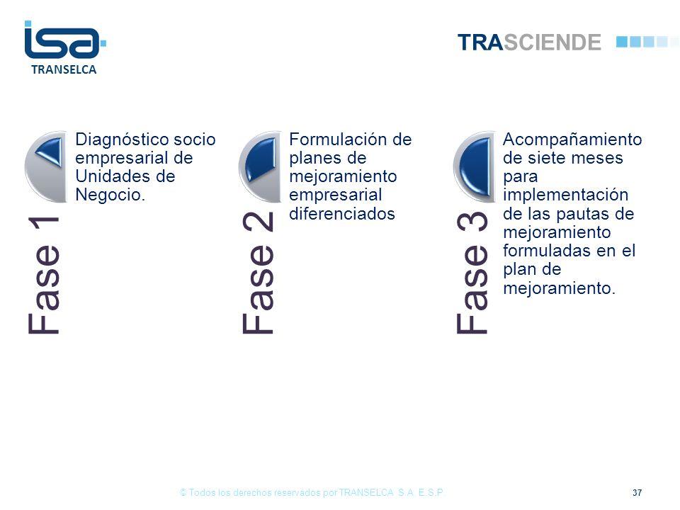 TRANSELCA TRASCIENDE Fase 1 Diagnóstico socio empresarial de Unidades de Negocio. Fase 2 Formulación de planes de mejoramiento empresarial diferenciad