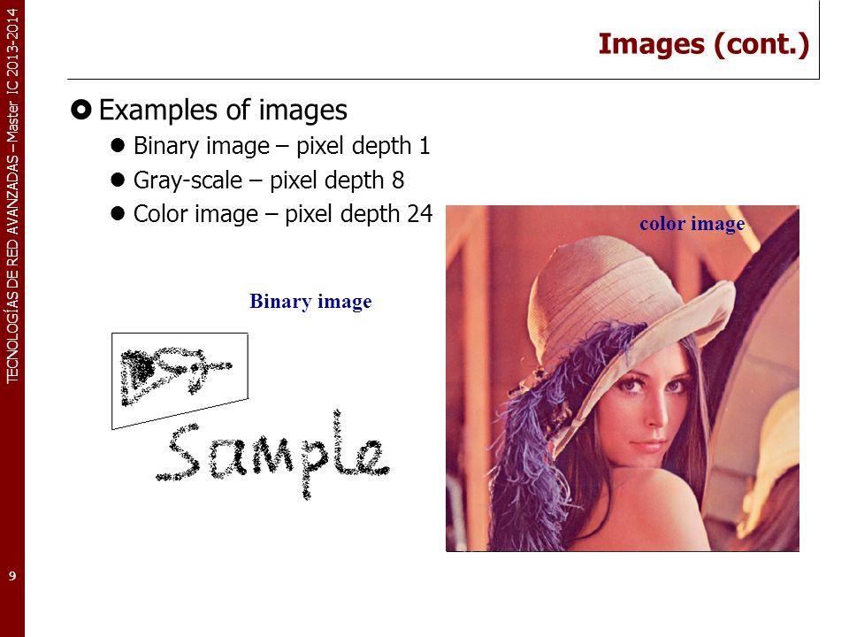 TECNOLOGÍAS DE RED AVANZADAS – Master IC 2013-2014 Images (cont.) Examples of images Binary image – pixel depth 1 Gray-scale – pixel depth 8 Color image – pixel depth 24 9 Binary image Gray-scale imagecolor image