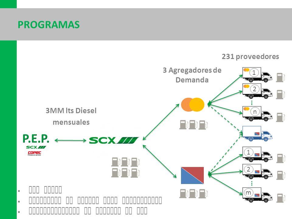 PROGRAMAS Sin costo Beneficio en costos para proveedores Compensaciones se imputan en HdC 1 2 n … 1 2 m … 231 proveedores 3 Agregadores de Demanda 3MM