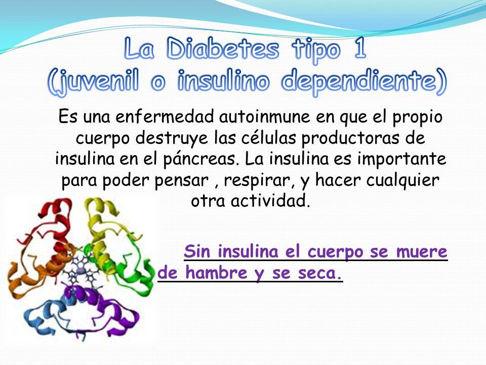 Las personas con diabetes se inyectan la insulina y necesitan medir su glucosa.