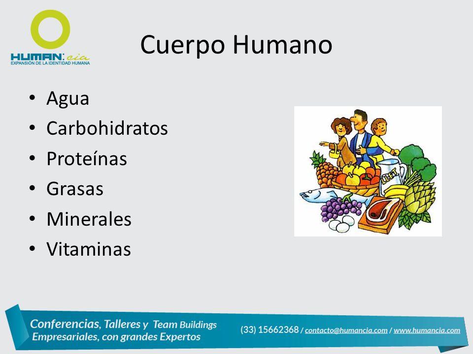 Agua Carbohidratos Proteínas Grasas Minerales Vitaminas Cuerpo Humano