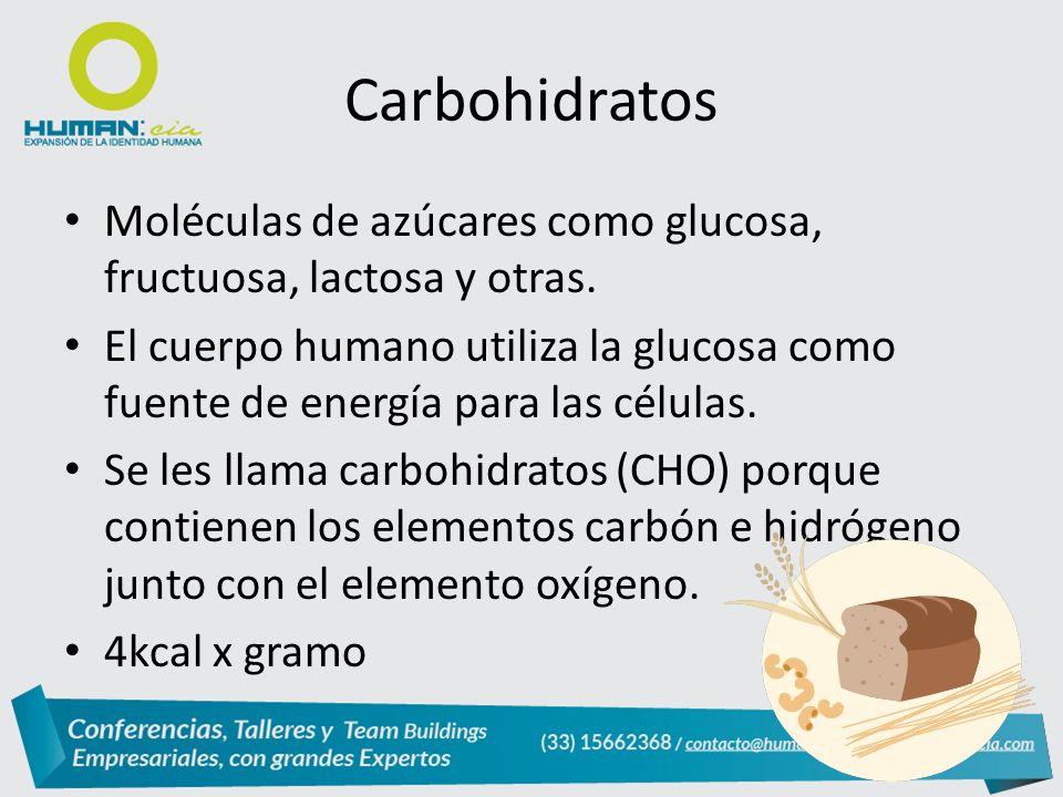 Moléculas de azúcares como glucosa, fructuosa, lactosa y otras.
