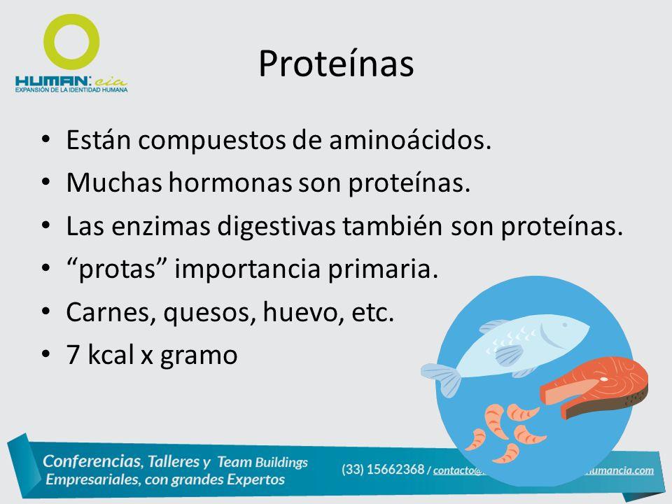 Están compuestos de aminoácidos.Muchas hormonas son proteínas.