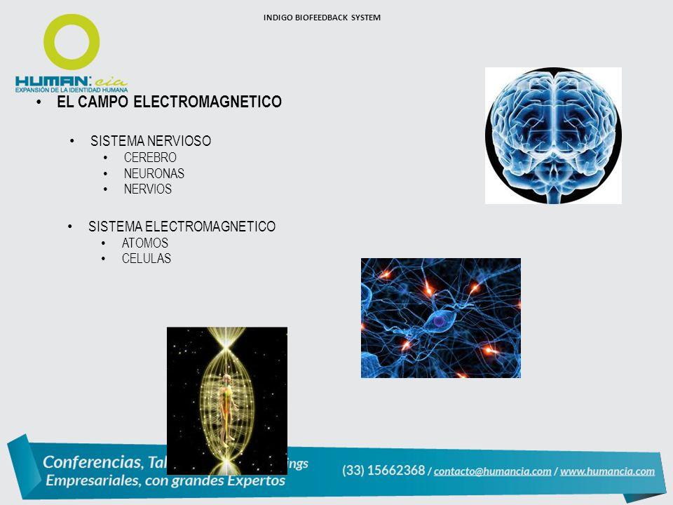 INDIGO BIOFEEDBACK SYSTEM EL CAMPO ELECTROMAGNETICO SISTEMA NERVIOSO CEREBRO NEURONAS NERVIOS SISTEMA ELECTROMAGNETICO ATOMOS CELULAS