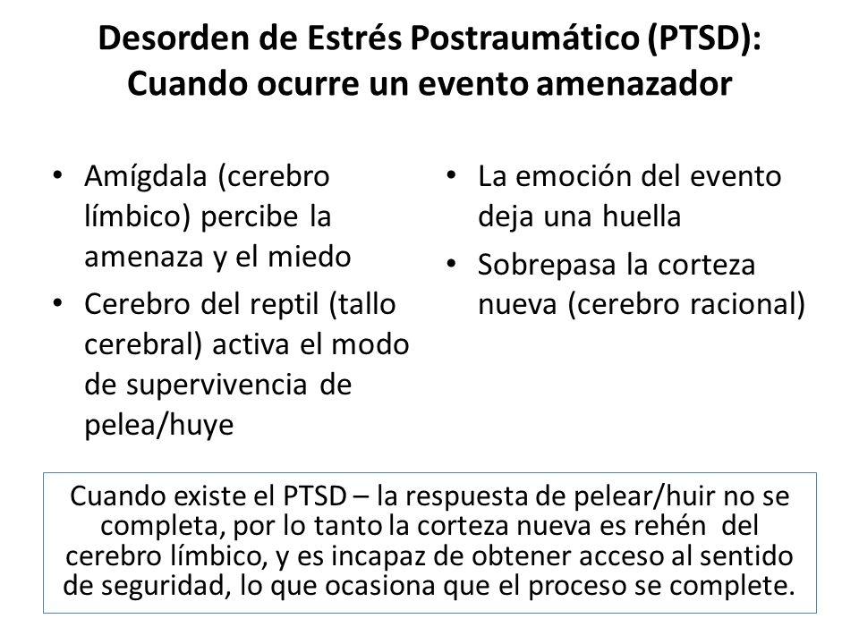 Desorden de Estrés Postraumático (PTSD): Cuando ocurre un evento amenazador Amígdala (cerebro límbico) percibe la amenaza y el miedo Cerebro del repti