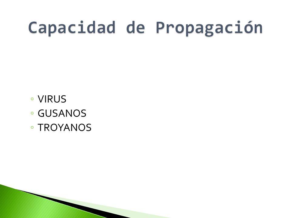 PUERTA TRASERA (Backdoor).
