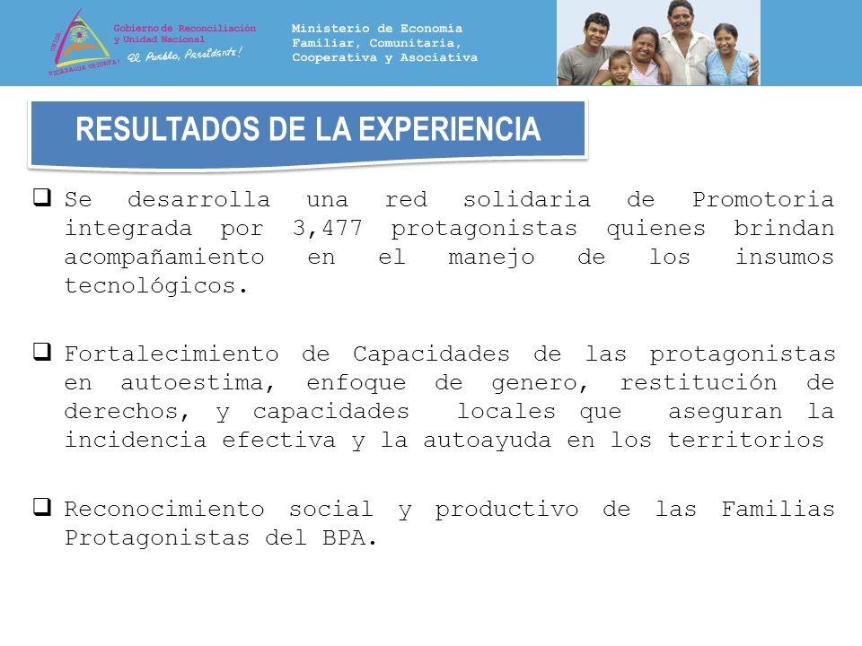 RESULTADOS DE LA EXPERIENCIA Se desarrolla una red solidaria de Promotoria integrada por 3,477 protagonistas quienes brindan acompañamiento en el mane