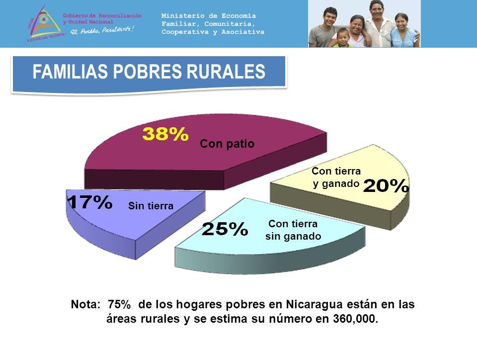 FAMILIAS POBRES RURALES Con patio Sin tierra Con tierra sin ganado Con tierra y ganado Nota: 75% de los hogares pobres en Nicaragua están en las áreas