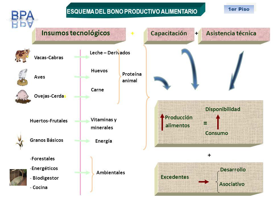 Producción Colectiva Comercialización de Excedentes ESQUEMA DEL BONO PRODUCTIVO ALIMENTARIO 2do Piso Promotoria Organizaciones Legalmente Constituidas Producción de Excedentes