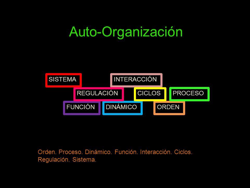 Orden. Proceso. Dinámico. Función. Interacción. Ciclos. Regulación. Sistema. Auto-Organización ORDEN PROCESO DINÁMICOFUNCIÓN INTERACCIÓN CICLOSREGULAC