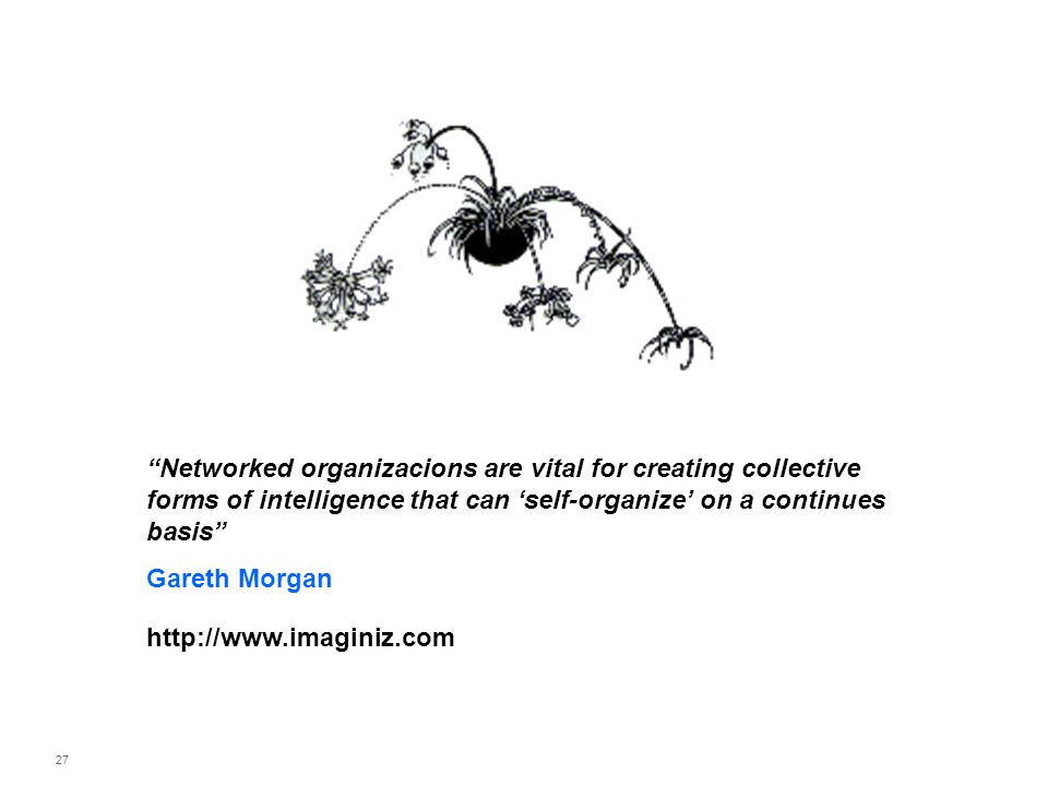 27 Networked organizacions are vital for creating collective forms of intelligence that can self-organize on a continues basis Gareth Morgan http://ww