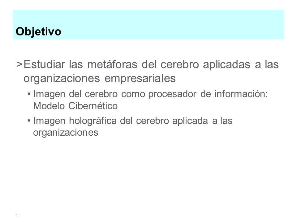 4 Objetivo >Estudiar las metáforas del cerebro aplicadas a las organizaciones empresariales Imagen del cerebro como procesador de información: Modelo