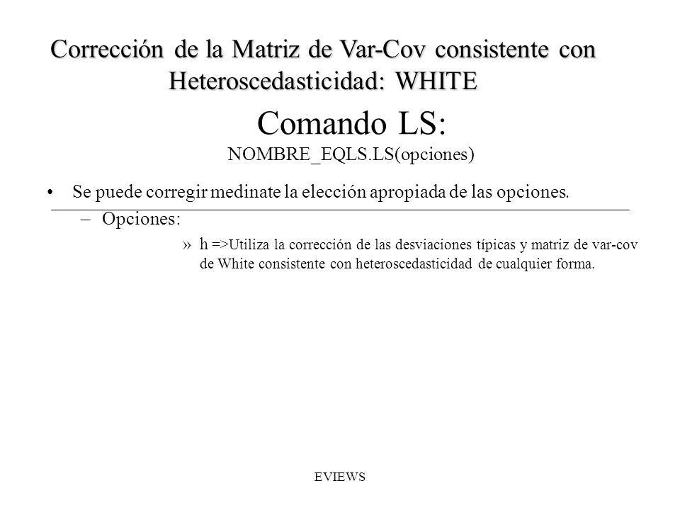 Comando LS: NOMBRE_EQLS.LS(opciones) Se puede corregir medinate la elección apropiada de las opciones. –Opciones: »h =>Utiliza la corrección de las de