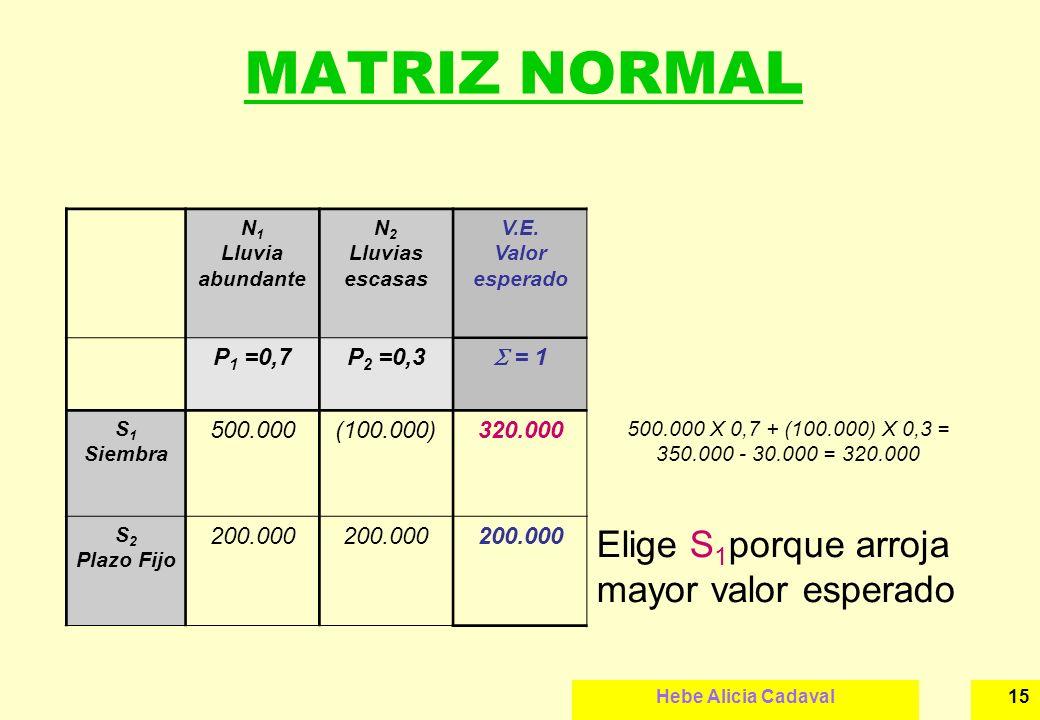 Hebe Alicia Cadaval15 MATRIZ NORMAL N 1 Lluvia abundante N 2 Lluvias escasas V.E. Valor esperado P 1 =0,7P 2 =0,3 = 1 S 1 Siembra 500.000(100.000)320.