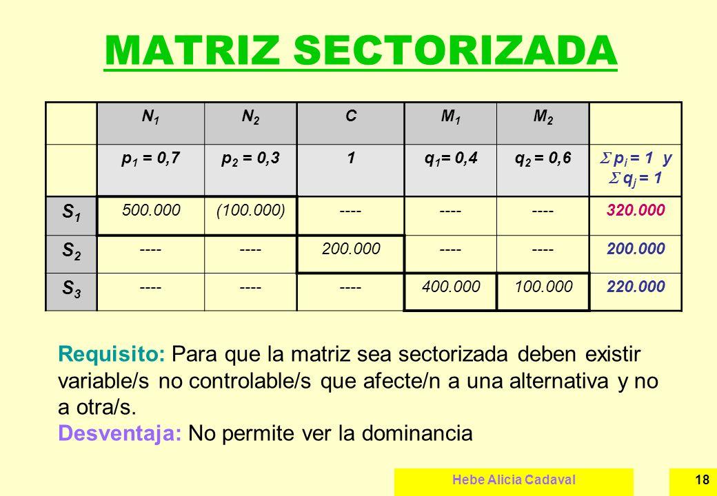 Hebe Alicia Cadaval18 MATRIZ SECTORIZADA N1N1 N2N2 CM1M1 M2M2 p 1 = 0,7p 2 = 0,31q 1 = 0,4q 2 = 0,6 p i = 1 y q j = 1 S1S1 500.000(100.000)---- 320.00