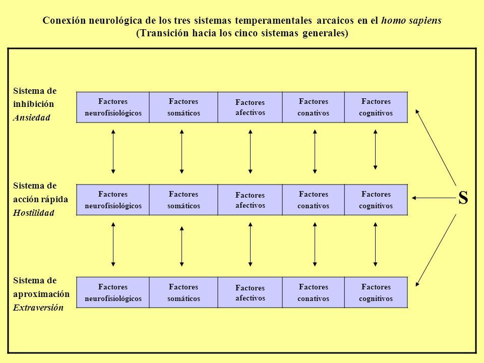 Conexión neurológica de los tres sistemas temperamentales arcaicos en el homo sapiens (Transición hacia los cinco sistemas generales) Sistema de inhibición Ansiedad Sistema de acción rápida Hostilidad Sistema de aproximación Extraversión S Factores neurofisiológicos Factores somáticos Factores afectivos Factores conativos Factores cognitivos Factores neurofisiológicos Factores somáticos Factores afectivos Factores conativos Factores cognitivos Factores neurofisiológicos Factores somáticos Factores afectivos Factores conativos Factores cognitivos