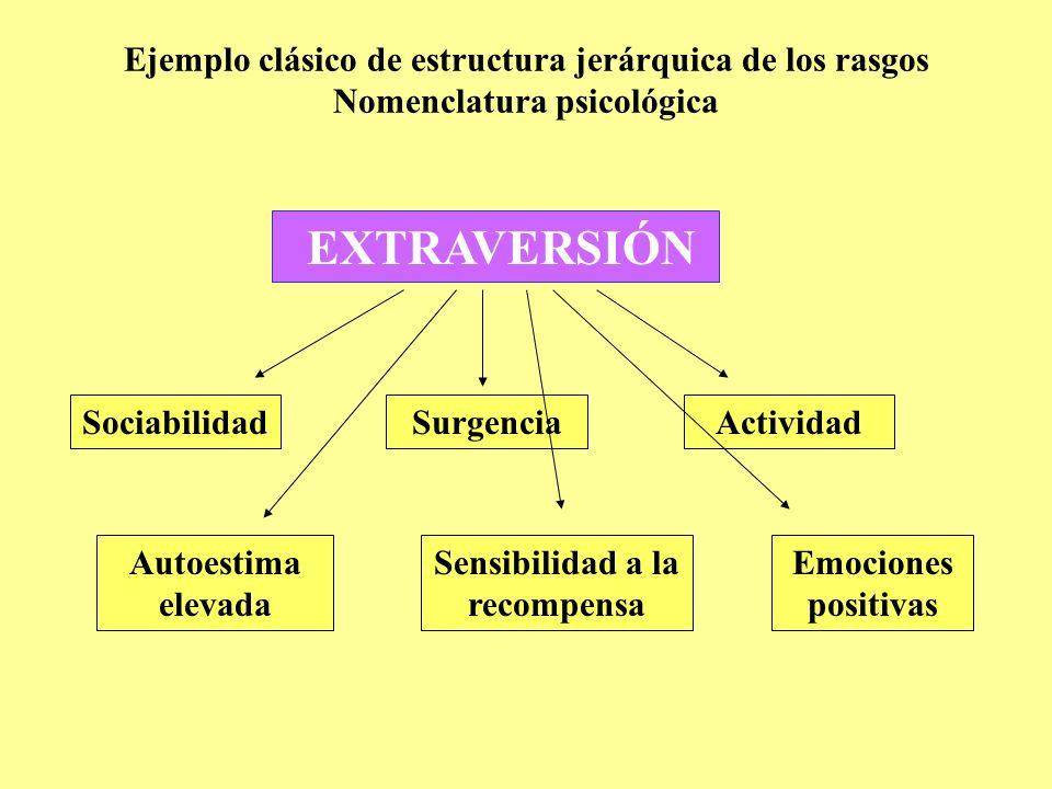 Ejemplo clásico de estructura jerárquica de los rasgos Nomenclatura psicológica y biológica EXTRAVERSIÓN (Sistema de aproximación) Sociabilidad (Sistema social) Autoestima elevada (Sistema cognitivo) Surgencia (Sistema conductual) Actividad (Sistema energético) Sensibilidad a la recompensa (Sistema instintivo) Emociones positivas (Sistema emocional)