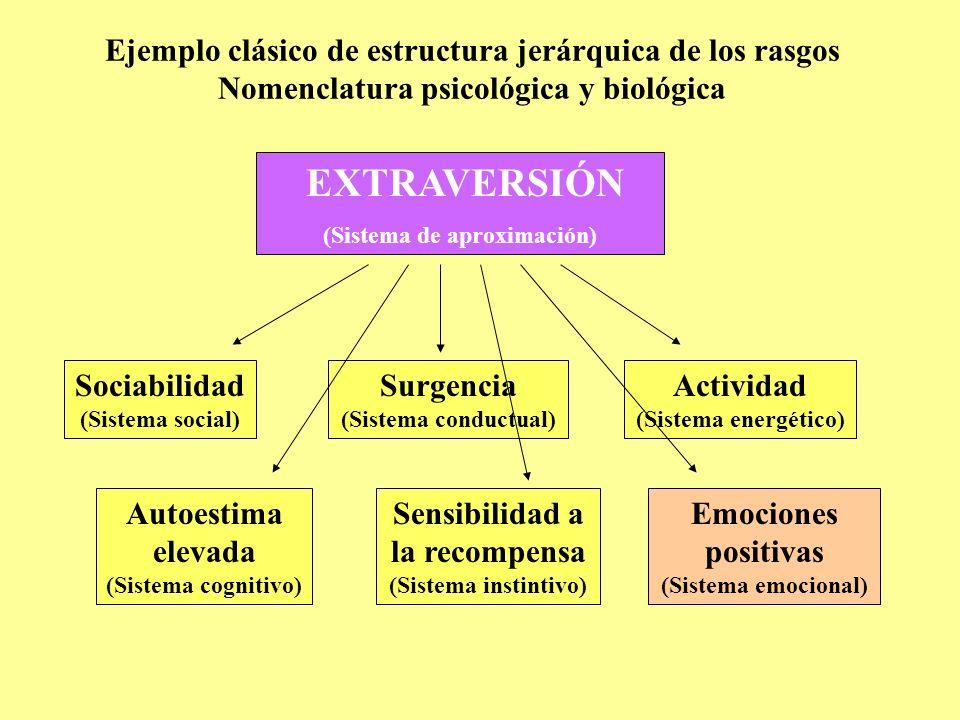 Ejemplo clásico de estructura jerárquica de los rasgos Nomenclatura psicológica y biológica EXTRAVERSIÓN (Sistema de aproximación) Sociabilidad (Siste