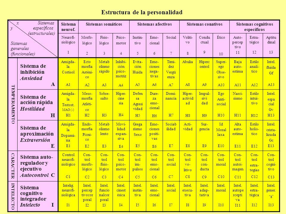 Estructura de la personalidad x Sistemas y específicos (estructurales) Sistemas generales (funcionales) Sistema neurof. Sistemas somáticosSistemas afe