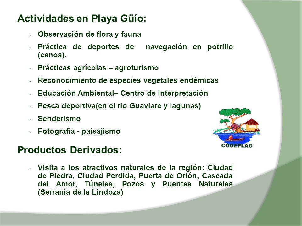 Actividades en Playa Güío: Observación de flora y fauna Práctica de deportes de navegación en potrillo (canoa). Prácticas agrícolas – agroturismo Reco