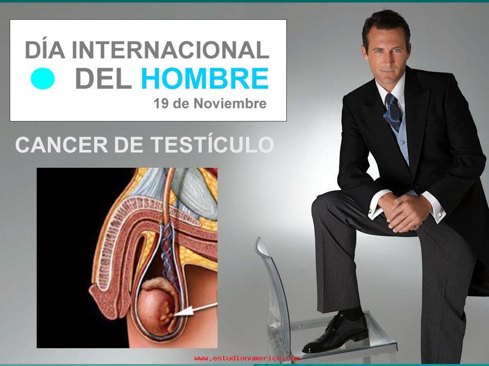 CANCER DE TESTÍCULO
