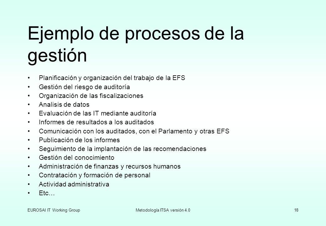 EUROSAI IT Working GroupMetodología ITSA versión 4.018 Ejemplo de procesos de la gestión Planificación y organización del trabajo de la EFS Gestión de