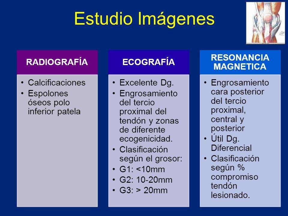 Estudio Imágenes RADIOGRAFÍA Calcificaciones Espolones óseos polo inferior patela ECOGRAFÍA Excelente Dg.
