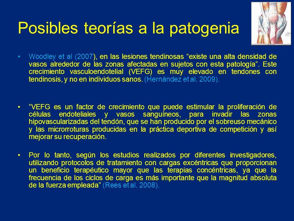 Posibles teorías a la patogenia Woodley et al (2007), en las lesiones tendinosas existe una alta densidad de vasos alrededor de las zonas afectadas en sujetos con esta patología.