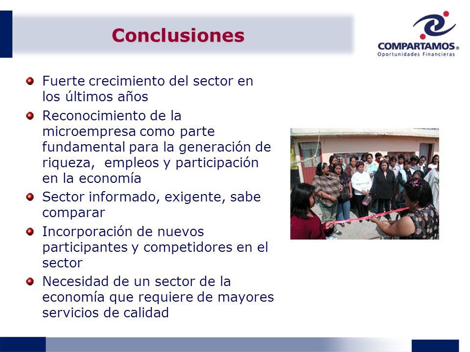 Conclusiones Fuerte crecimiento del sector en los últimos años Reconocimiento de la microempresa como parte fundamental para la generación de riqueza,
