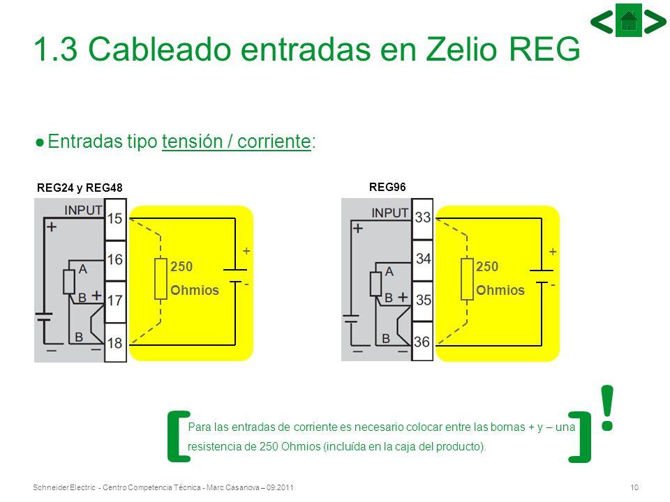 10Schneider Electric - Centro Competencia Técnica - Marc Casanova – 09.2011 1.3 Cableado entradas en Zelio REG Entradas tipo tensión / corriente: REG2